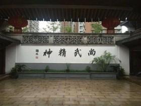 浅淡传统武术的传承和发展(蔡其宏)