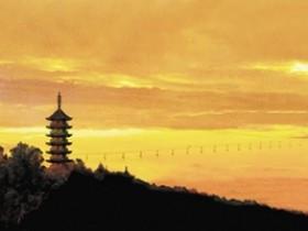 瑞安市碧山南拳协会成立三周年庆典