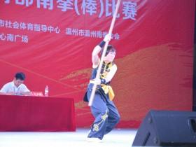 温州市第十五届运动会温州南拳比赛20131021
