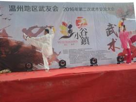 2016年温州地区武友会第二次武术交流会