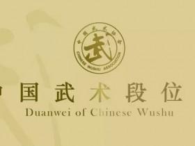 中国武术高段位英雄谱