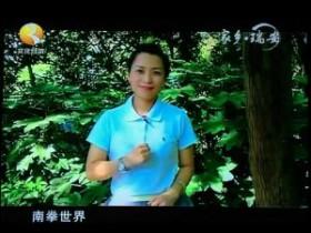 瑞安电视台纪录片《家乡瑞安》瑞安南拳