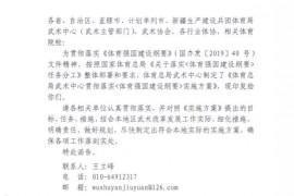 关于印发《体育总局武术中心贯彻落实实施方案》的函!