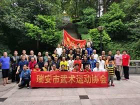 """2020年瑞安市第三十八届民间传统""""武术节"""",在龙山公园杨府庙举行"""