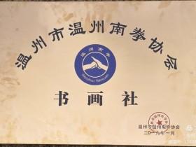 温州市南拳协会书画社一2020年(一)